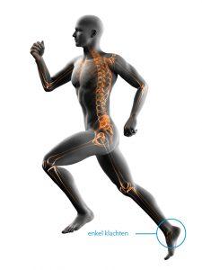 fysiotherapie-lbs-afbeelding-enkel