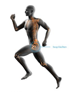 fysiotherapie-lbs-afbeelding-heup