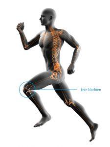 fysiotherapie-lbs-afbeelding-knie