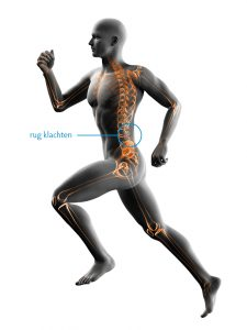 fysiotherapie-lbs-afbeelding-rug