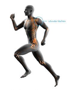 fysiotherapie-lbs-afbeelding-schouder